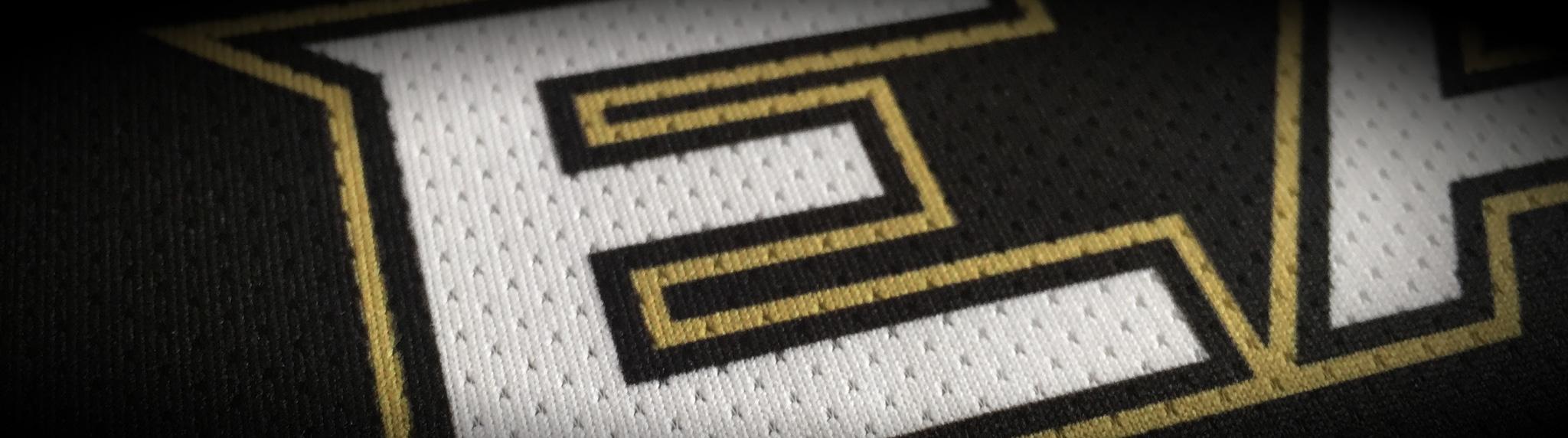 Newcastle Eagles Banner Image